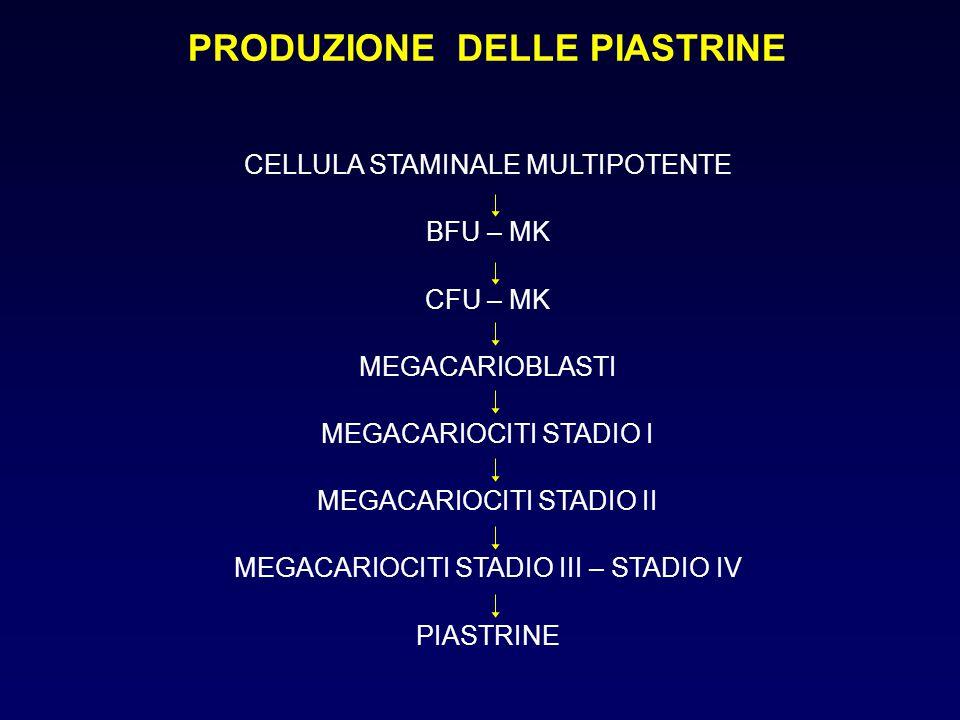 PRODUZIONE DELLE PIASTRINE