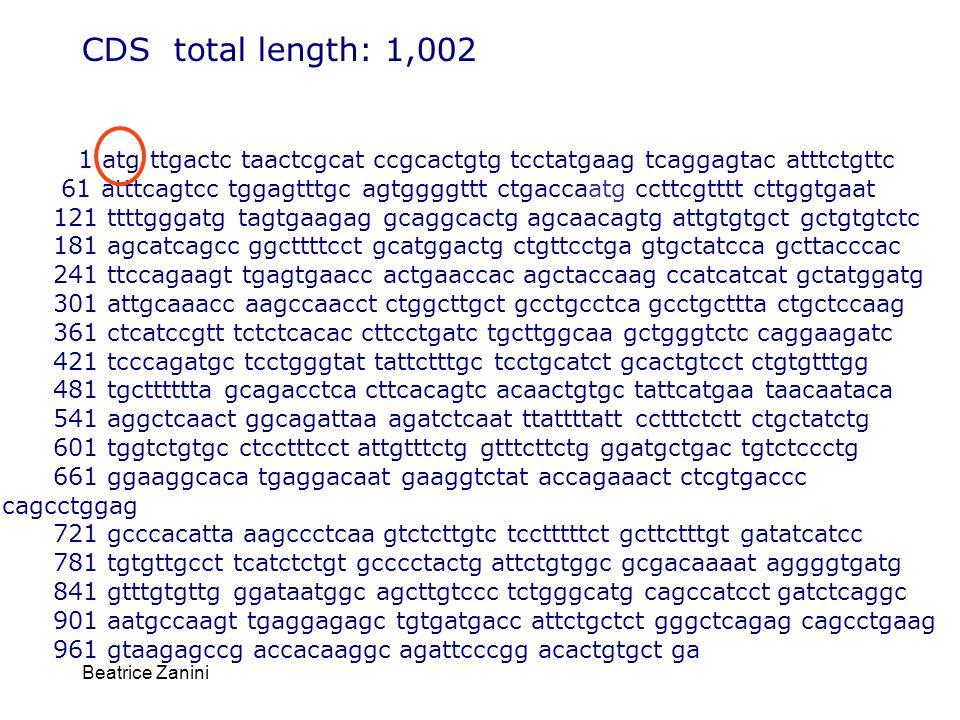 CDS total length: 1,002 1 atg ttgactc taactcgcat ccgcactgtg tcctatgaag tcaggagtac atttctgttc.