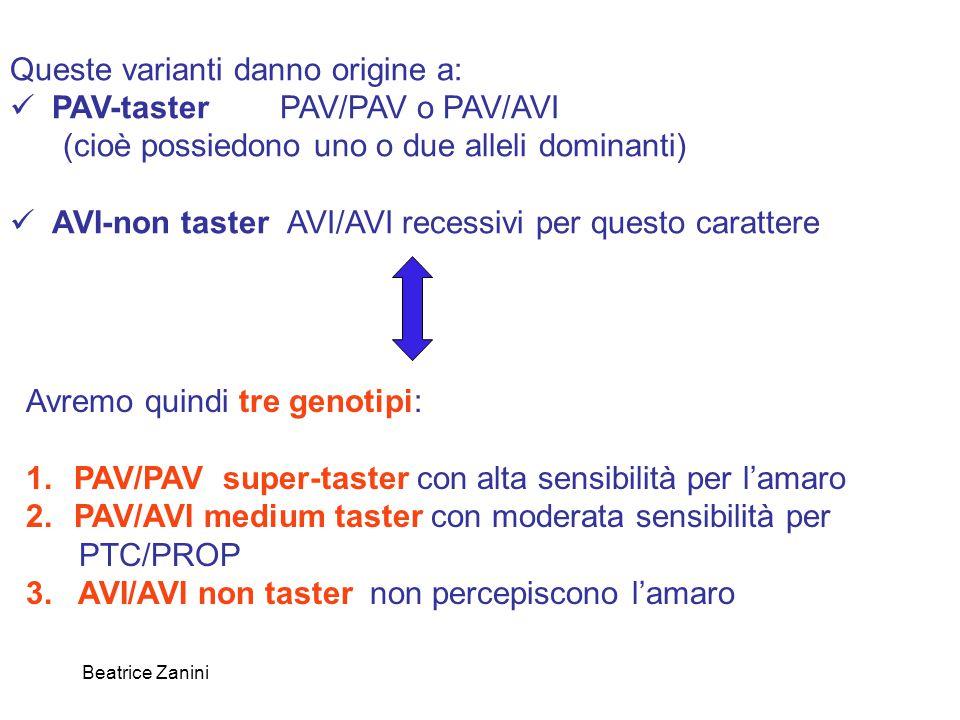Queste varianti danno origine a: PAV-taster PAV/PAV o PAV/AVI
