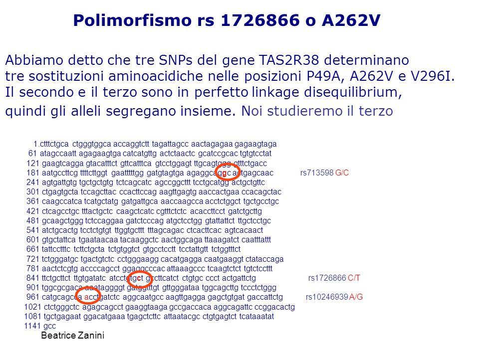 Polimorfismo rs 1726866 o A262V Abbiamo detto che tre SNPs del gene TAS2R38 determinano.