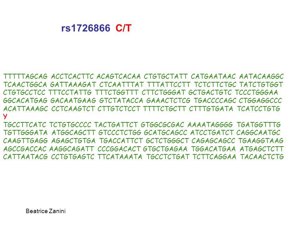 rs1726866 C/T TTTTTAGCAG ACCTCACTTC ACAGTCACAA CTGTGCTATT CATGAATAAC AATACAAGGC. TCAACTGGCA GATTAAAGAT CTCAATTTAT TTTATTCCTT TCTCTTCTGC TATCTGTGGT.