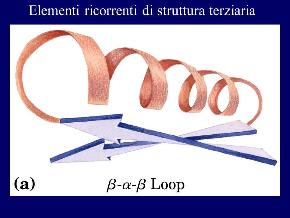 Elementi ricorrenti di struttura terziaria
