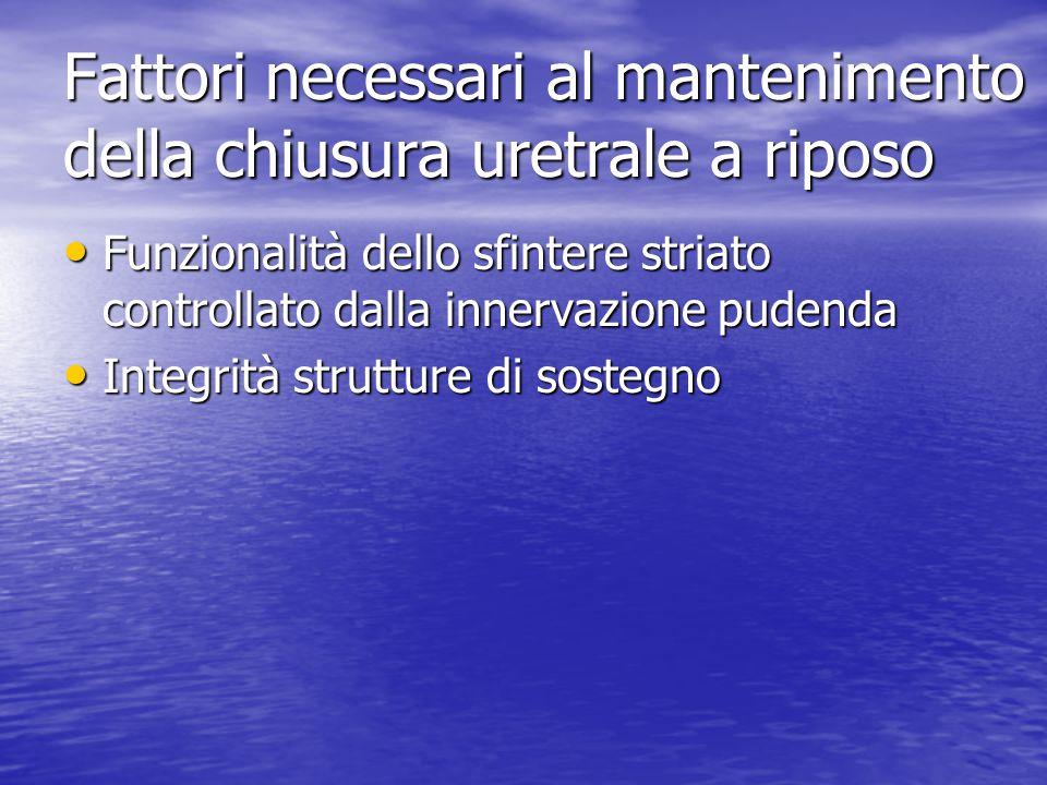 Fattori necessari al mantenimento della chiusura uretrale a riposo