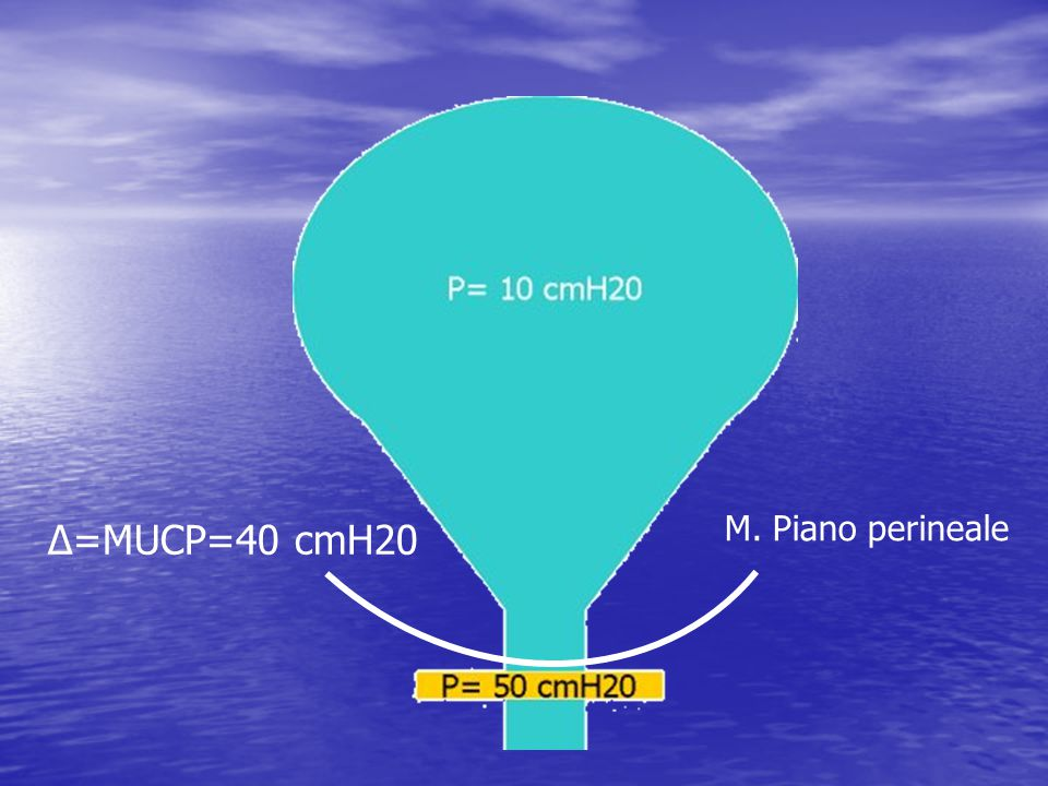M. Piano perineale Δ=MUCP=40 cmH20