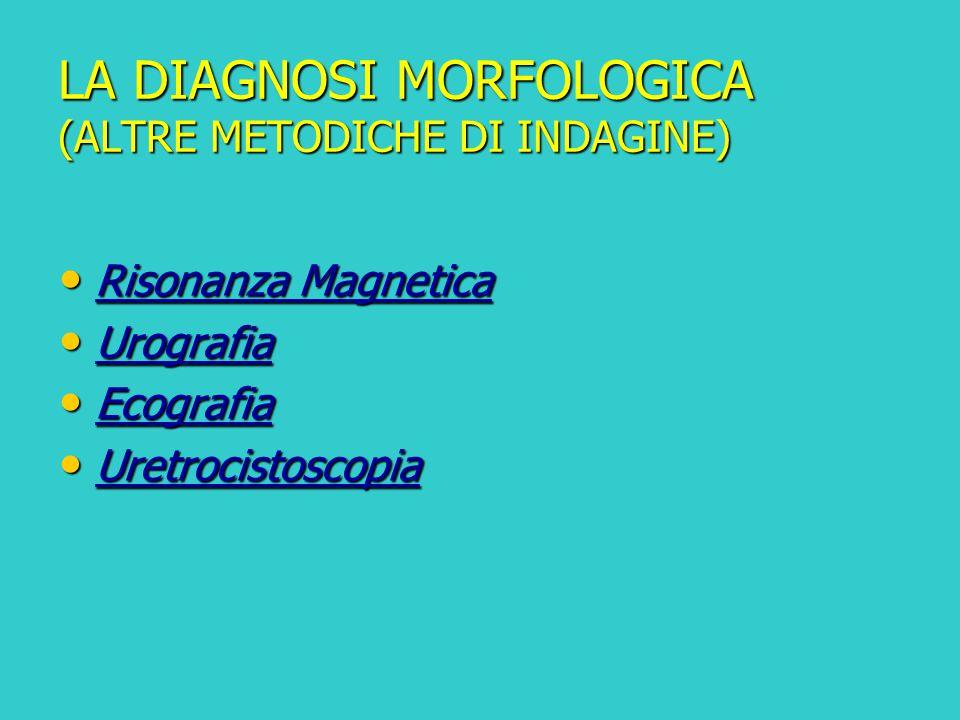 LA DIAGNOSI MORFOLOGICA (ALTRE METODICHE DI INDAGINE)