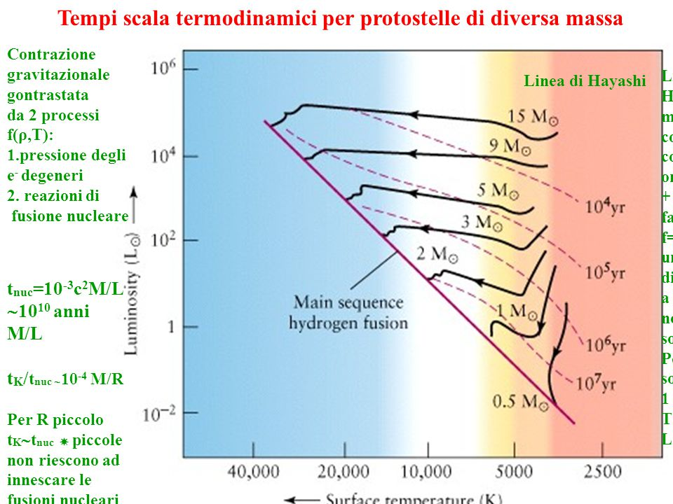 Tempi scala termodinamici per protostelle di diversa massa