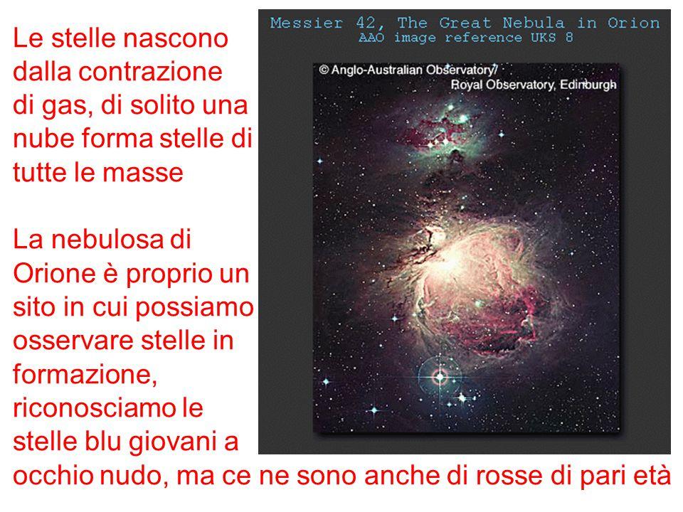 Le stelle nascono dalla contrazione. di gas, di solito una. nube forma stelle di. tutte le masse.
