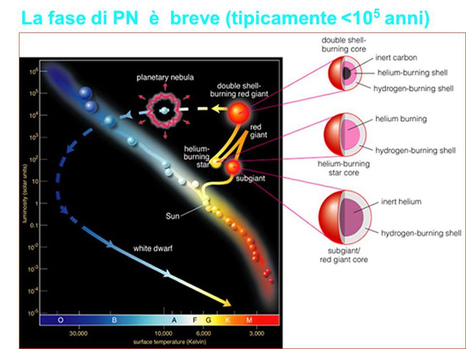 La fase di PN è breve (tipicamente <105 anni)