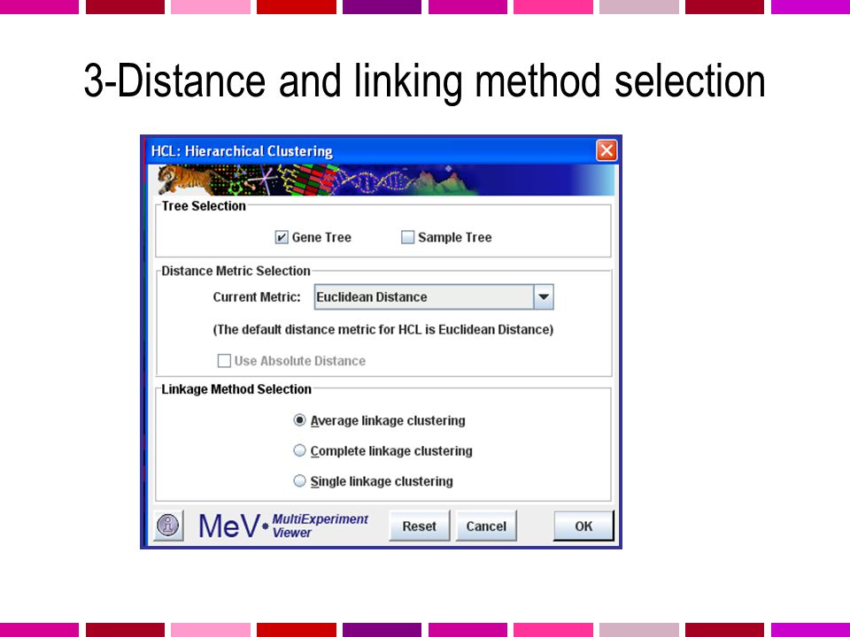 3-Distance and linking method selection