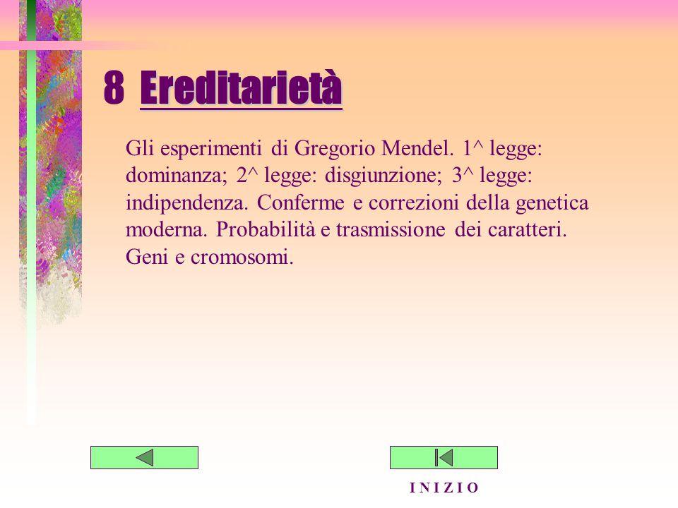 8 Ereditarietà