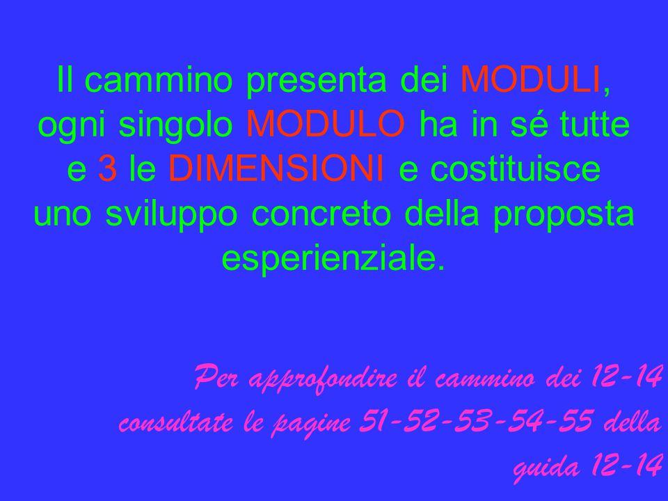 Il cammino presenta dei MODULI, ogni singolo MODULO ha in sé tutte e 3 le DIMENSIONI e costituisce uno sviluppo concreto della proposta esperienziale.