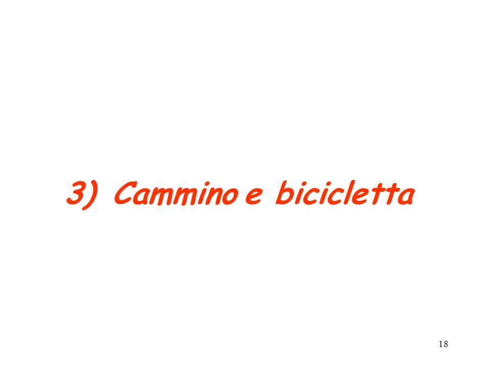 Cammino e bicicletta