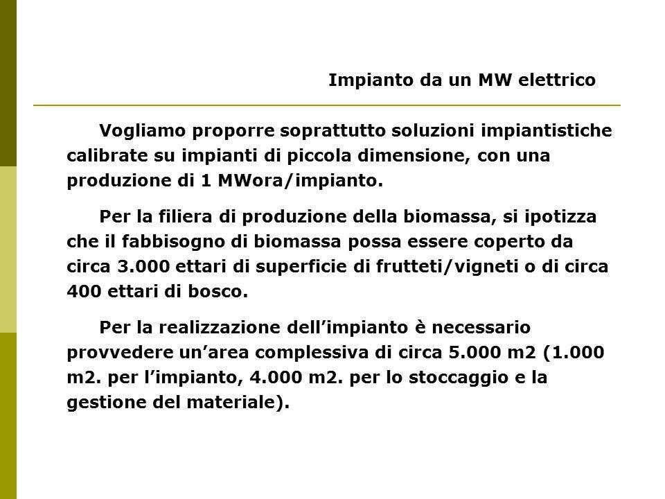 Impianto da un MW elettrico