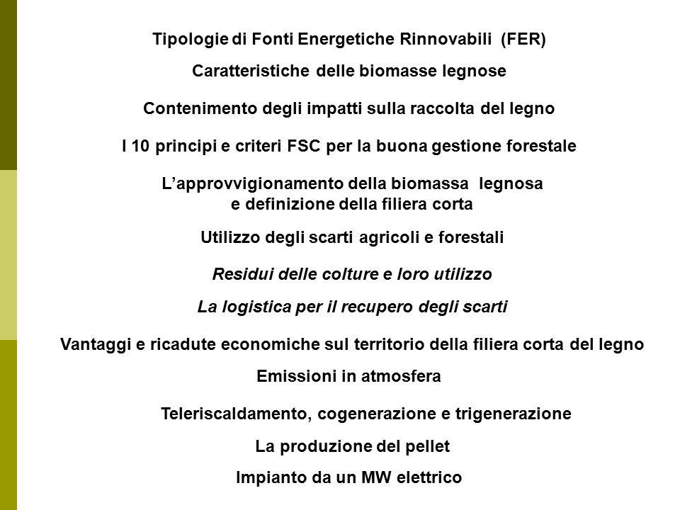 Tipologie di Fonti Energetiche Rinnovabili (FER)