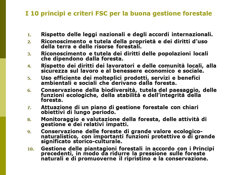 I 10 principi e criteri FSC per la buona gestione forestale