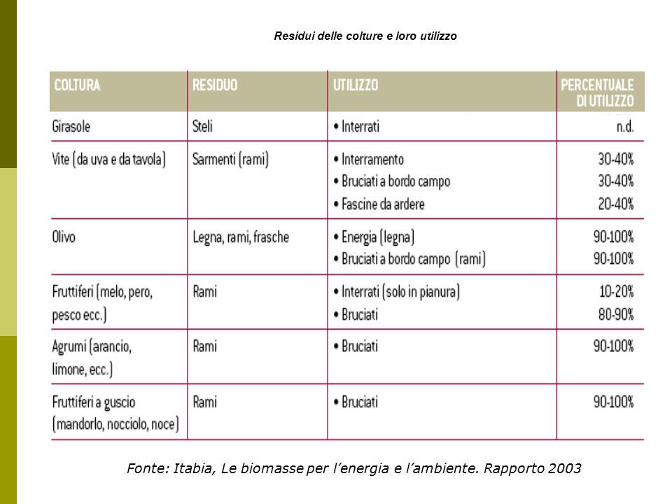 Fonte: Itabia, Le biomasse per l'energia e l'ambiente. Rapporto 2003