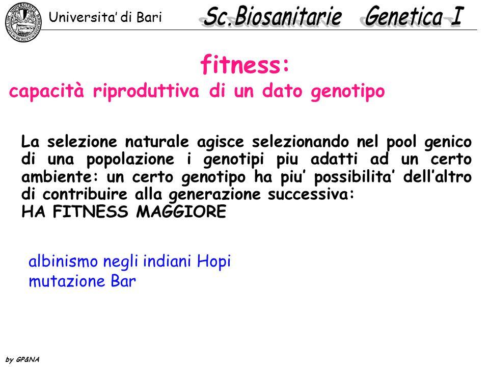 fitness: capacità riproduttiva di un dato genotipo