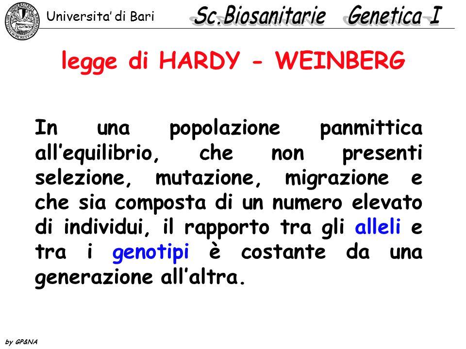 legge di HARDY - WEINBERG