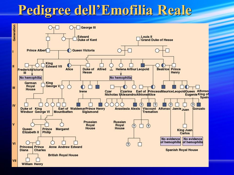 Pedigree dell'Emofilia Reale
