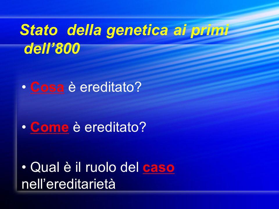 Stato della genetica ai primi dell'800
