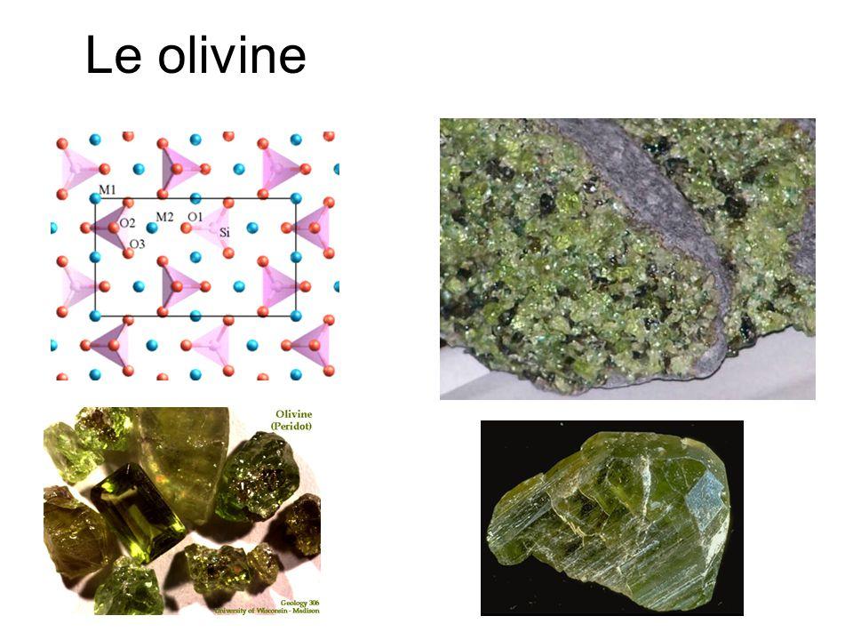Le olivine