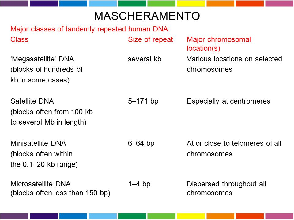 MASCHERAMENTO Major classes of tandemly repeated human DNA: