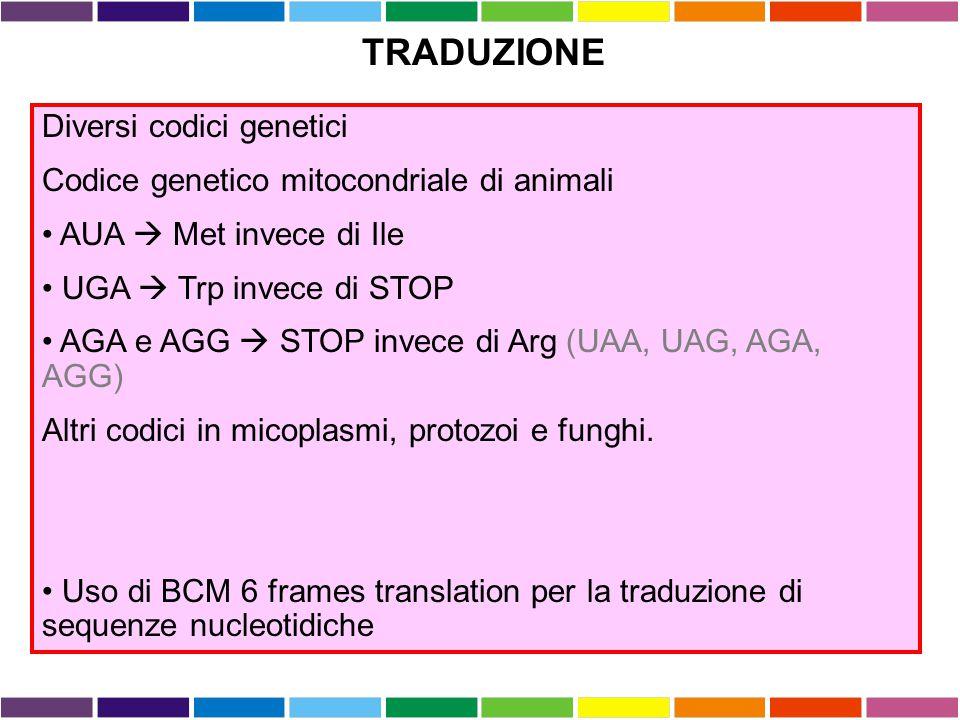 TRADUZIONE Diversi codici genetici