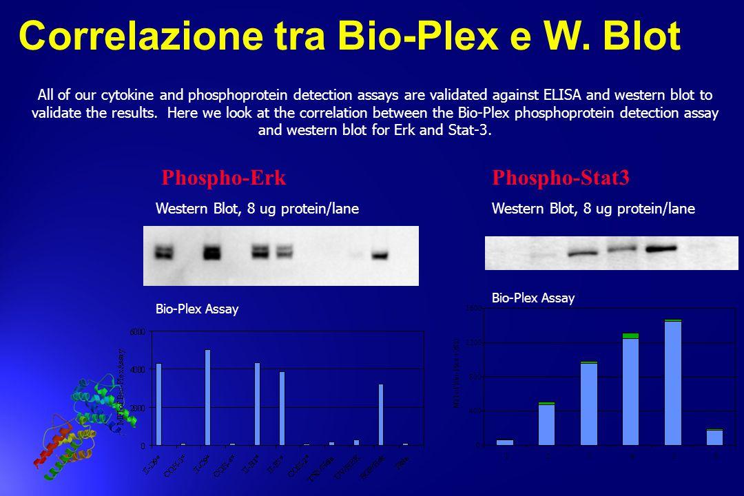 Correlazione tra Bio-Plex e W. Blot