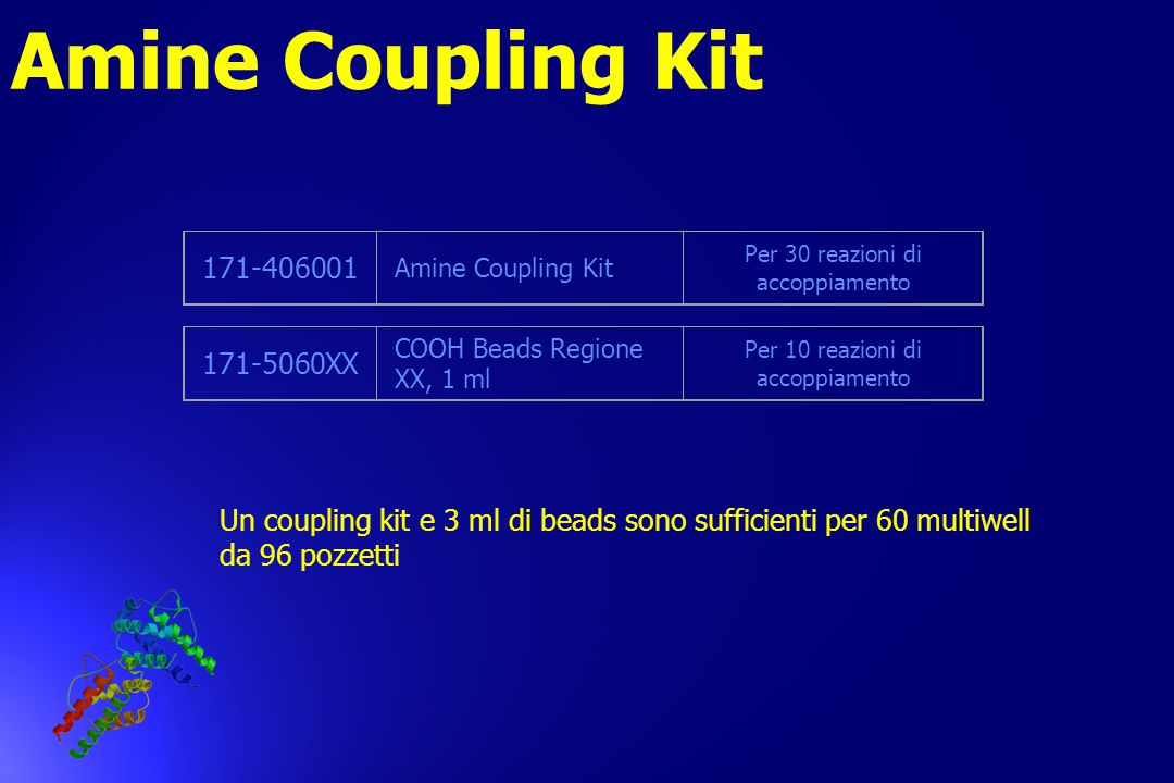 Amine Coupling Kit 171-406001 171-5060XX