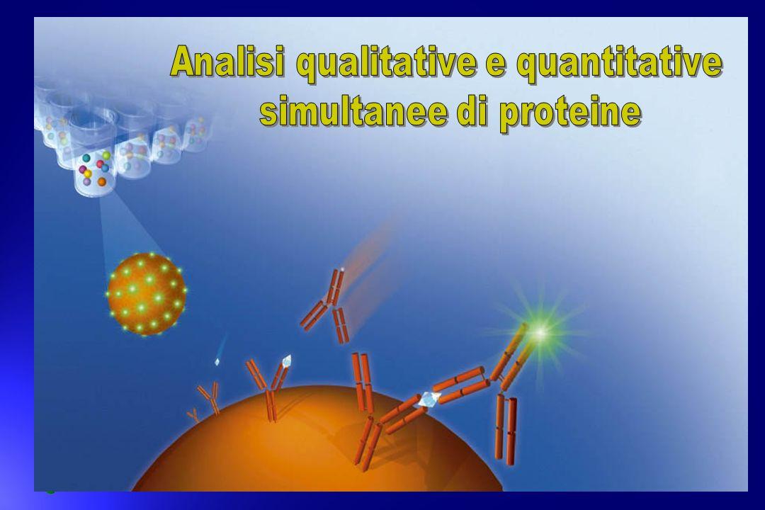 Analisi qualitative e quantitative simultanee di proteine