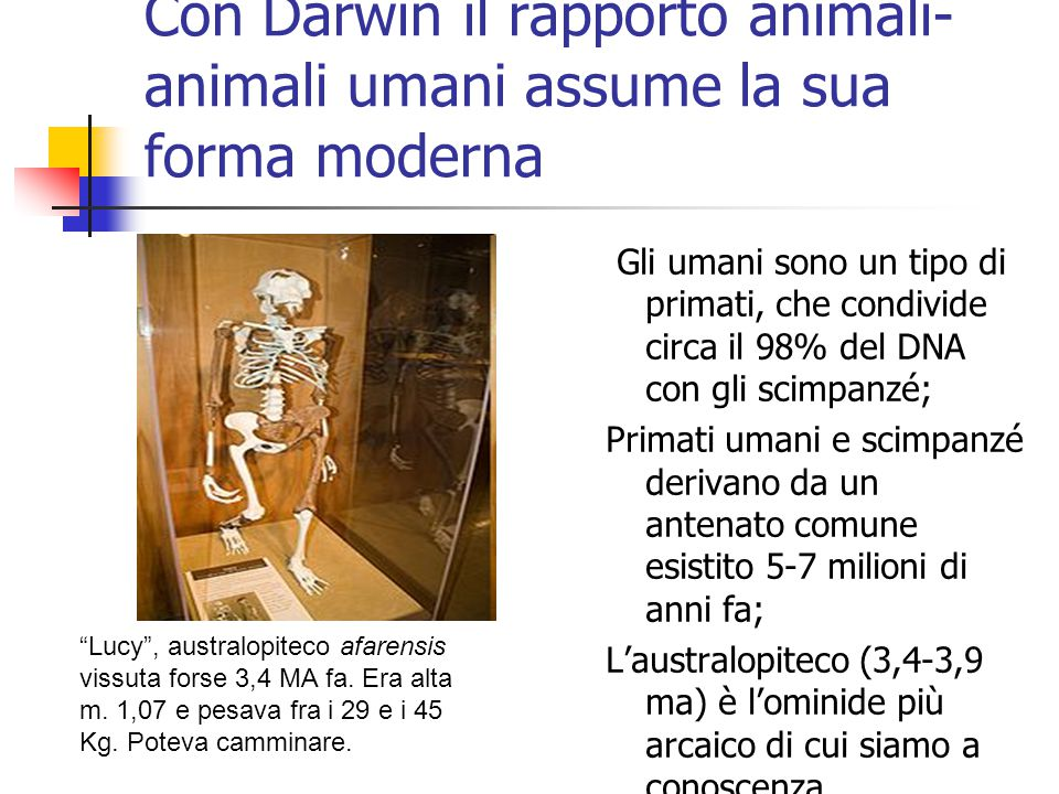Con Darwin il rapporto animali-animali umani assume la sua forma moderna