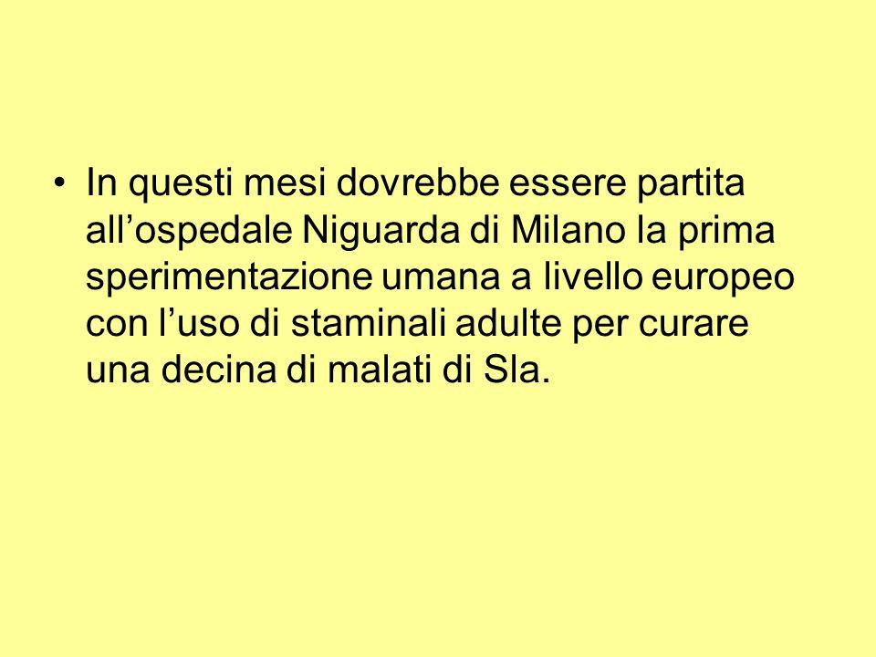 In questi mesi dovrebbe essere partita all'ospedale Niguarda di Milano la prima sperimentazione umana a livello europeo con l'uso di staminali adulte per curare una decina di malati di Sla.