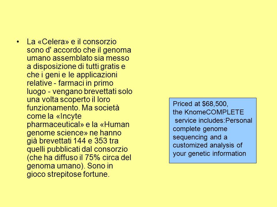 La «Celera» e il consorzio sono d accordo che il genoma umano assemblato sia messo a disposizione di tutti gratis e che i geni e le applicazioni relative - farmaci in primo luogo - vengano brevettati solo una volta scoperto il loro funzionamento. Ma società come la «Incyte pharmaceutical» e la «Human genome science» ne hanno già brevettati 144 e 353 tra quelli pubblicati dal consorzio (che ha diffuso il 75% circa del genoma umano). Sono in gioco strepitose fortune.