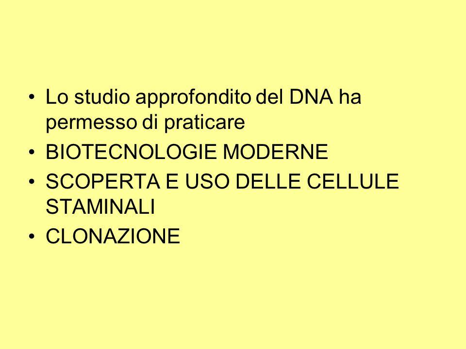 Lo studio approfondito del DNA ha permesso di praticare