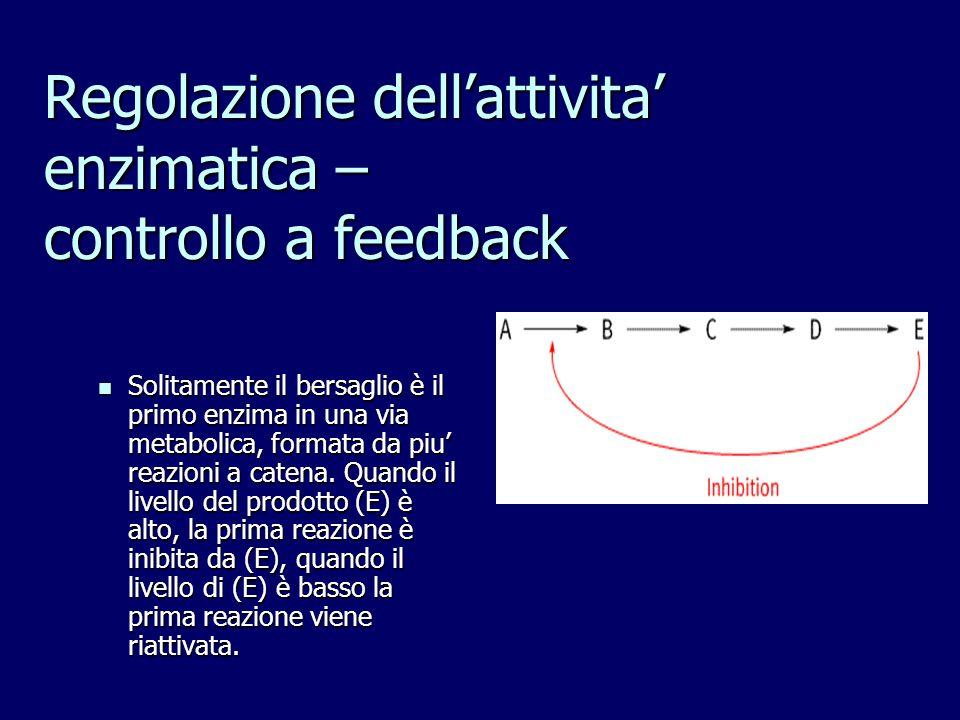 Regolazione dell'attivita' enzimatica – controllo a feedback