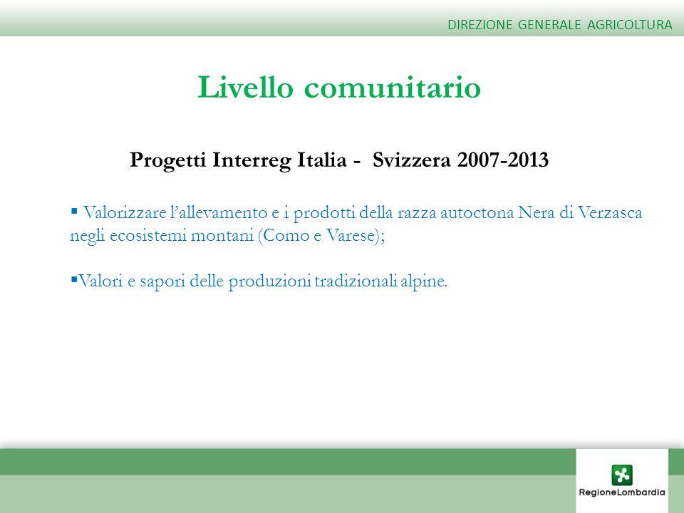 Progetti Interreg Italia - Svizzera 2007-2013