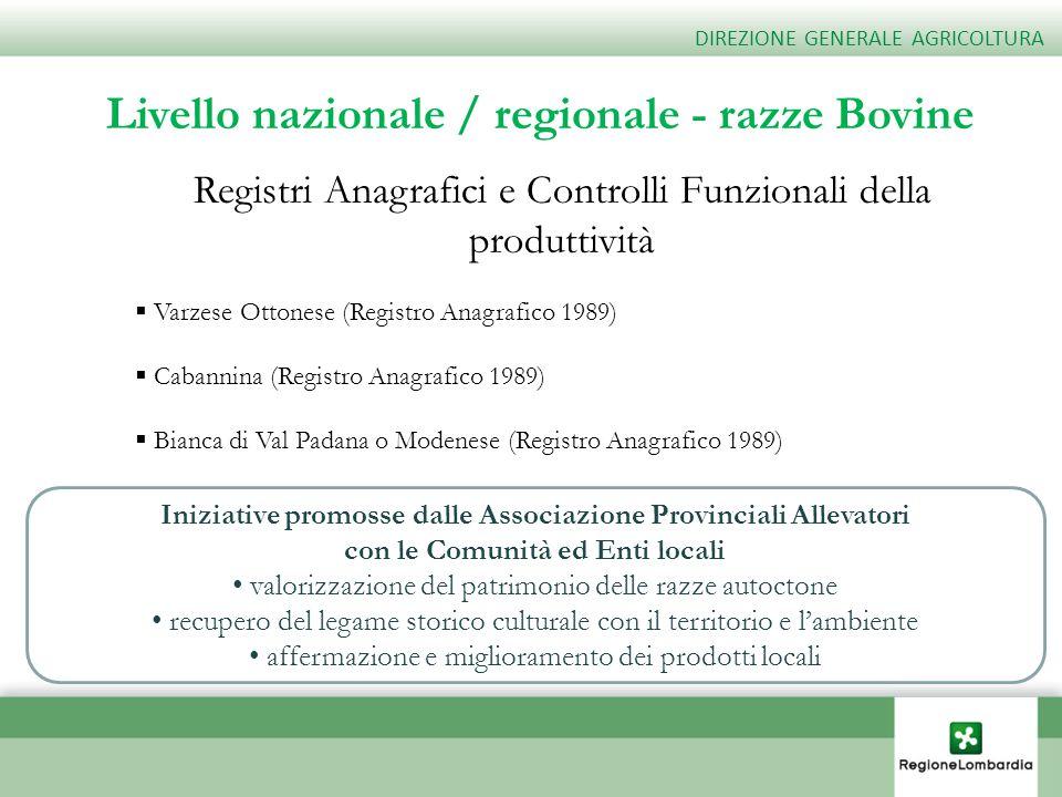 Livello nazionale / regionale - razze Bovine