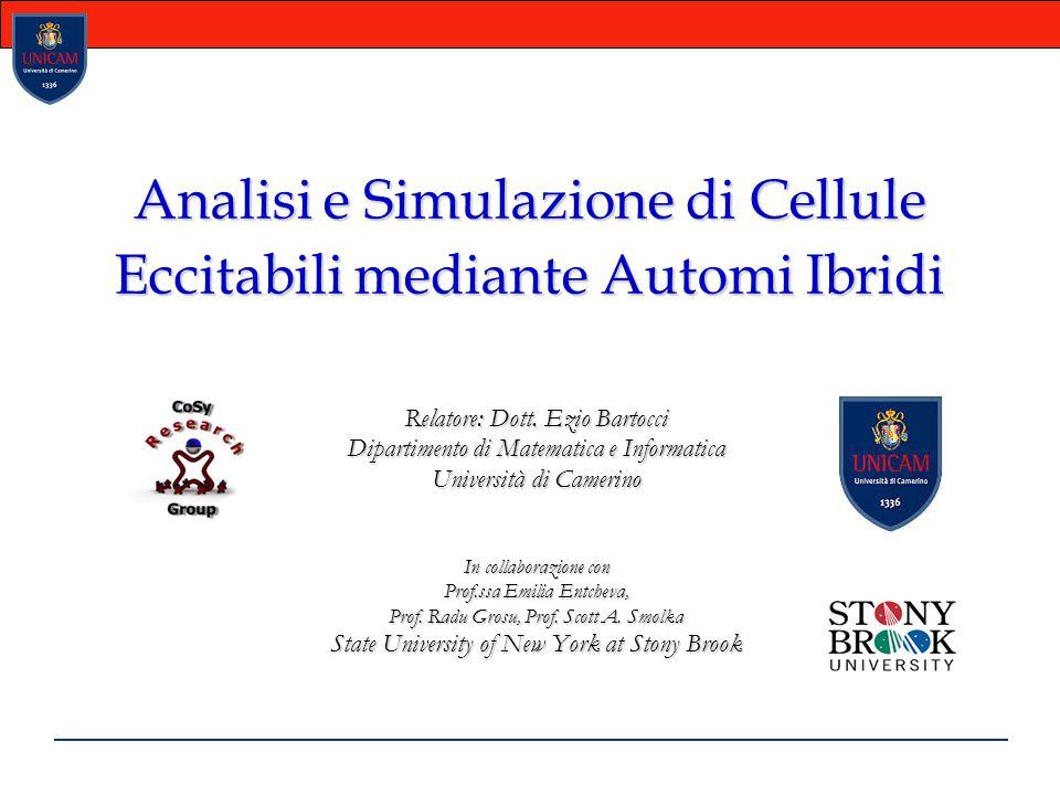 Analisi e Simulazione di Cellule Eccitabili mediante Automi Ibridi