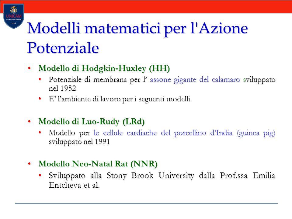 Modelli matematici per l Azione Potenziale