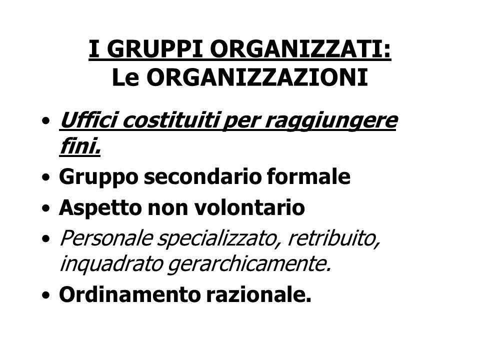 I GRUPPI ORGANIZZATI: Le ORGANIZZAZIONI