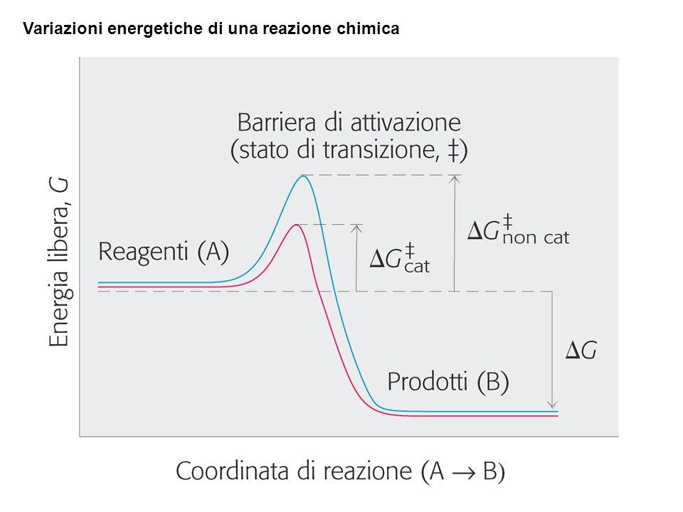 Variazioni energetiche di una reazione chimica