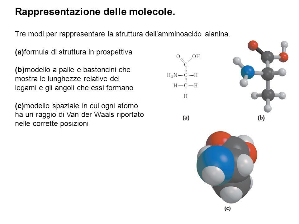 Rappresentazione delle molecole.