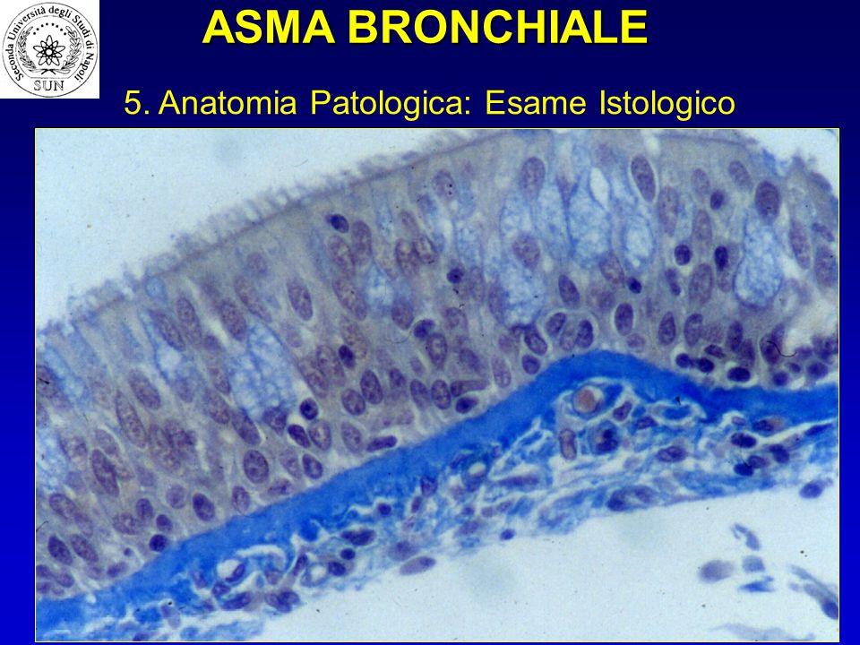 ASMA BRONCHIALE 5. Anatomia Patologica: Esame Istologico