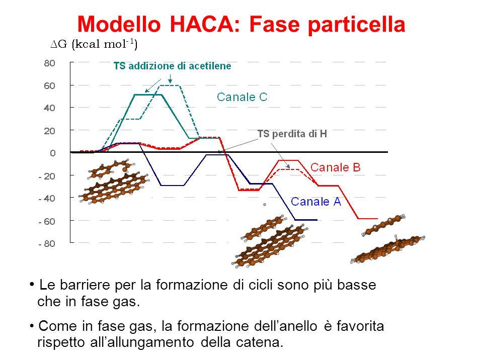 Modello HACA: Fase particella