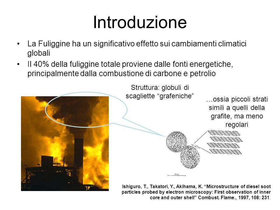 Introduzione La Fuliggine ha un significativo effetto sui cambiamenti climatici globali.