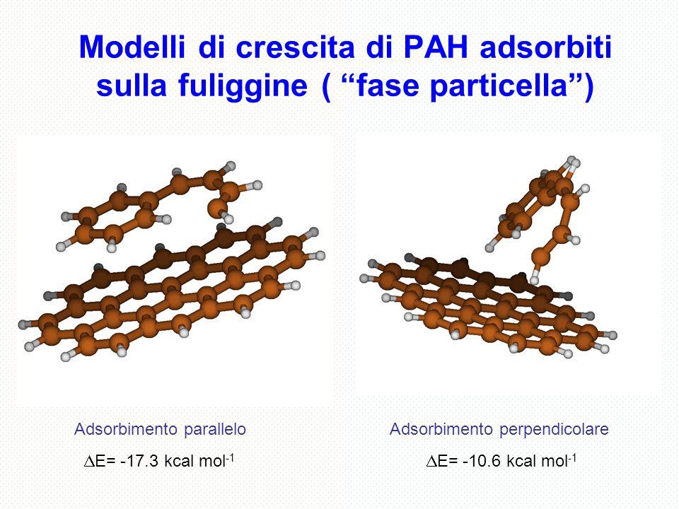 Modelli di crescita di PAH adsorbiti sulla fuliggine ( fase particella )