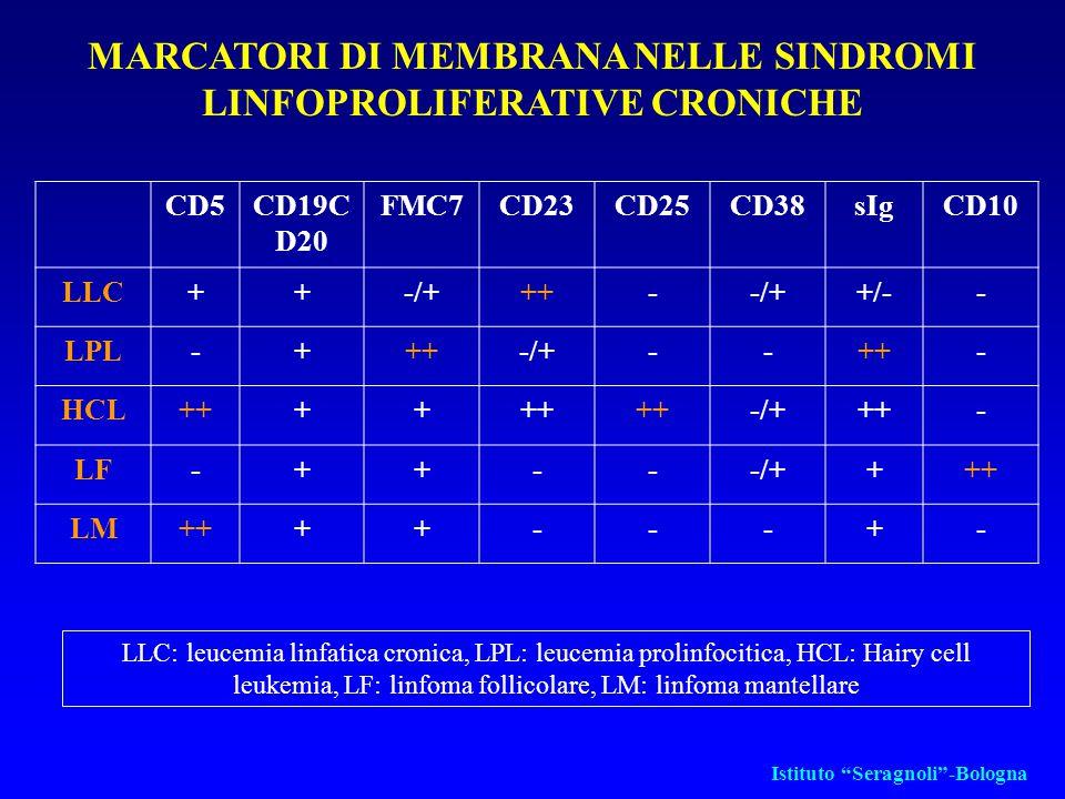 MARCATORI DI MEMBRANA NELLE SINDROMI LINFOPROLIFERATIVE CRONICHE