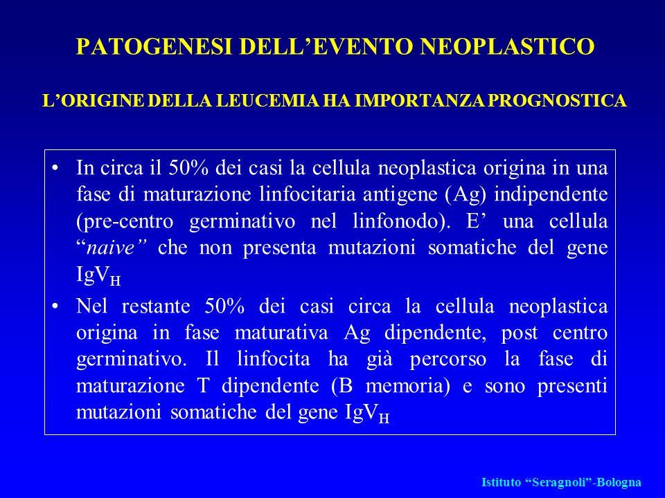 PATOGENESI DELL'EVENTO NEOPLASTICO L'ORIGINE DELLA LEUCEMIA HA IMPORTANZA PROGNOSTICA