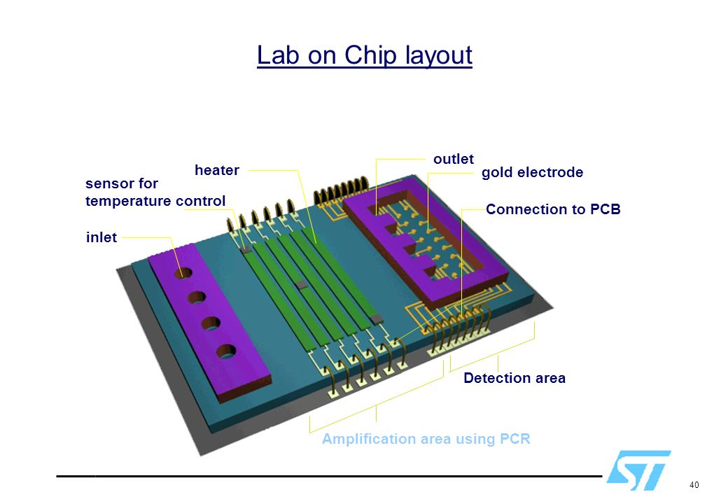 Lab on Chip layout outlet heater gold electrode sensor for