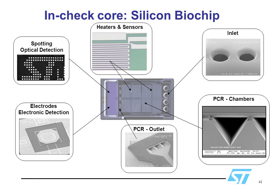 In-check core: Silicon Biochip